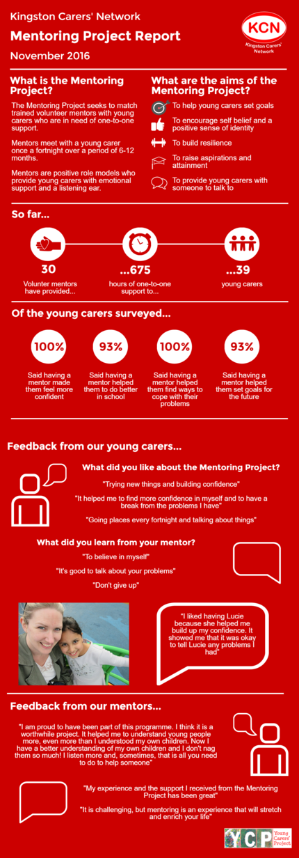 Facts and figures on what our Mentoring Project has achieved so far